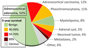 Likelihood of diagnosis when an adrenal-nodule is identified; pheochromocytoma is in yellow near the top-right corner