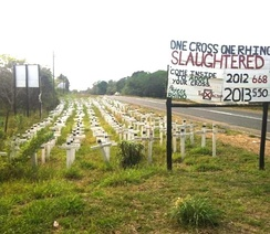 Memorial to rhinos killed by poachers near St Lucia Estuary, South Africa