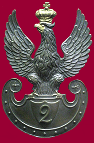 Eagle of an officer in the Army of Congress Poland