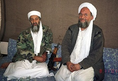 Osama bin Laden and Ayman al-Zawahiri have promoted the overthrow of secular governments.