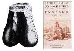Кости мегалозавра (рисунок слева); из книги Роберта Плота «Естественная история Оксфордшира» (обложка справа)