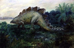Artist's 1901 depiction of a Stegosaurus (inaccurately portrayed with a dragging tail).