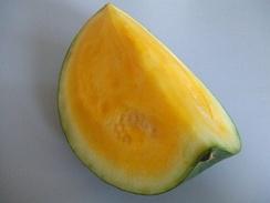 Жёлтый арбуз. Гибрид арбуза обыкновенного и дикого жёлтого арбуза