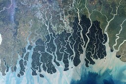 SPOT satellite image of Sundarbans, released by CNES