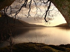Loch Lomond in Scotland forms a relatively isolated ecosystem. The fish community of this lake has remained stable over a long period until a number of introductions in the 1970s restructured its food web.[21]