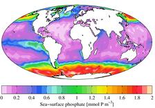 Среднегодовое содержание на морской поверхности фосфата (2009)