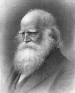 William Cullen Bryant, from a lithograph published in 1876