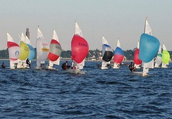 420 class dinghies with symmetric spinnakers.