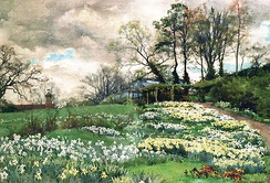 Watercolour of Willmott's garden by Alfred Parsons (private collection)
