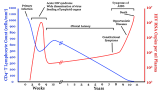 A graph with two lines. One in blue moves from high on the right to low on the left with a brief rise in the middle. The second line in red moves from zero to very high then drops to low and gradually rises to high again