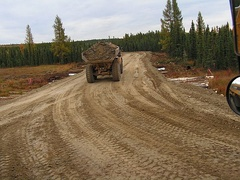Caterpillar D300E hauling on a corduroy road built over muskeg