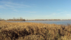 Detroit River International Wildlife Refuge, the only international wildlife preserve in North America.