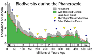 Apparent marine fossil diversity during the Phanerozoic[76]