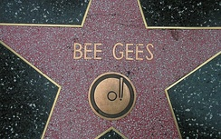 Bee Gees' star on the Hollywood Walk of Fame