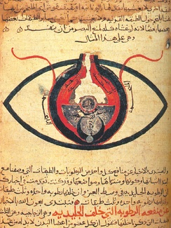 The eye, according to Hunain ibn Ishaq from a manuscript dated circa 1200.