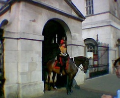 A sentry of the King's Troop, Royal Horse Artillery outside Horse Guards