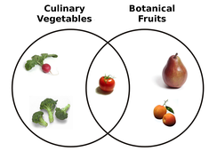 Venn diagram representing the relationship between (culinary) vegetables and botanical fruits[citation needed]
