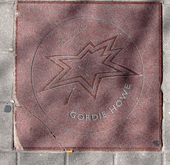 Gordie Howe's star on the Walk of Fame as of April 2009. Damage can be seen on the bottom left corner.