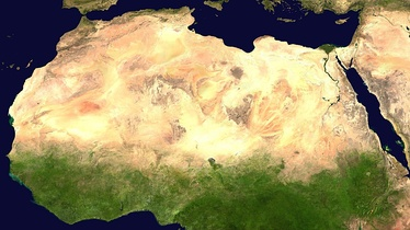 The Sahara was not a desert during the African humid period. Instead, most of northern Africa was covered by grass, trees, and lakes.