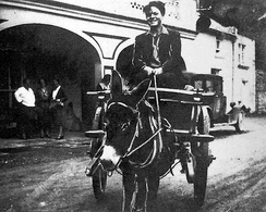 After graduating, 16-year-old Orson Welles embarked on a painting and sketching tour of Ireland and the Aran Islands, traveling by donkey cart (1931)