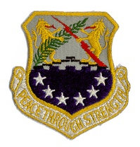 Emblem used by the 100th Wing