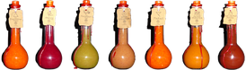 Depictions of vials of potions