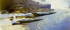 The Blue Angels flew the F11F from 1957 to 1969.