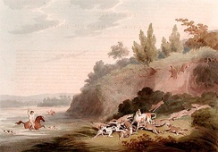 Hunting Jackals by Samuel Howitt, illustrating a group of golden jackals rushing to the defence of a fallen pack-mate