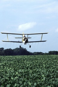 Biplane cropduster over US soybean field