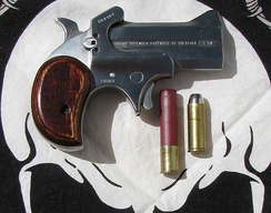 Bond Arms Cowboy Defender .45 Colt/.410 Shotshell Derringer