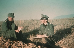 Situation briefing near Stalingrad between a company commander and a platoon leader