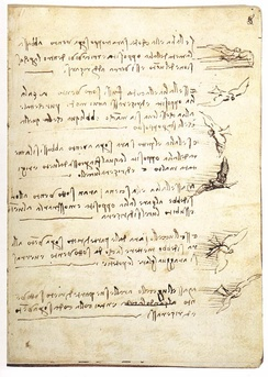 Leonardo wrote aerodynamic studies in a notebook eventually titled  ''Codex on the Flight of Birds''[1]