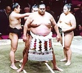 Akebono Taro (born May 8, 1969), Hawaii-born sumo wrestler, first foreign born wrestler to reach highest sumo rank Yokozuna