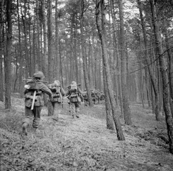 British infantrymen advance through the Reichswald during Operation Veritable, 8 February 1945.