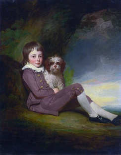 George, Lord Brooke (1772–1786) (George Romney)