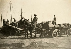 Two mules pulling a wagon loaded by supplies. A man rides one of the mules, while another man stands on the wagon.