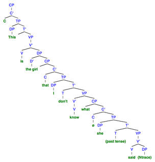 "Sentence 6B: This syntactic tree of the sentence ""This is the girl that I don't know what she said"" demonstrates the structure when there is an obligatory resumptive pronoun used. To denote a null category, ""ø"" is used."