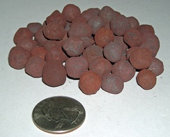 Processed taconite pellets with reddish surface oxidation as used in the steelmaking industry, with a U.S. quarter (diameter: 24 mm [0.94 in]) shown for scale