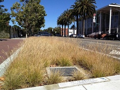 A bioretention cell for treating urban runoff in California