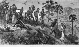 Arab slave traders and their captives along the Ruvuma river (in today's Tanzania and Mozambique), 19th-century drawing by David Livingstone.