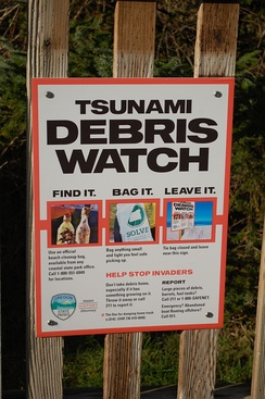 A sign informing beachgoers about proper tsunami debris disposal procedures at Cape Lookout State Park, Oregon, US