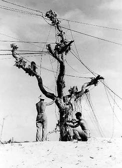 Old telephone wires are a challenging communications channel for modern digital communications.