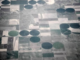 Farmland in the United States. The round fields are due to the use of center pivot irrigation