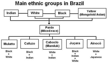 Main ethnic groups in Brazil.