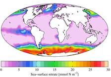 Среднегодовое содержание на морской поверхности селитры (2009)