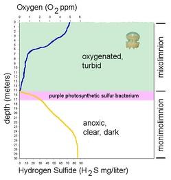Диграмма разделения озера на слои