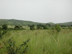 Savannah near the Gbomblora Department, on the road from Gaoua to Batié