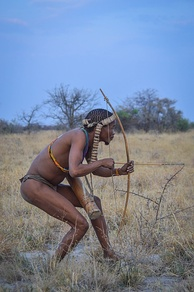 Hunter-gatherers, including the San today, use persistence hunting to catch prey faster than themselves.