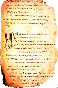 The Cathach of St. Columba, one of the earliest instances of written Celtic language