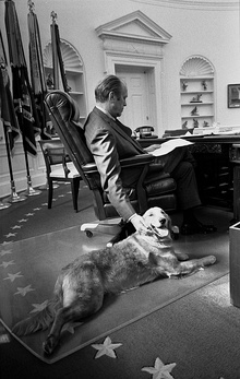President Ford and his golden retriever Liberty - NARA - 6829597.jpg